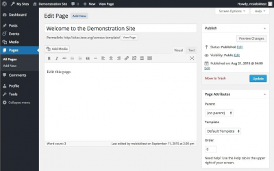 WordPress Edit Page - Demonstration Site